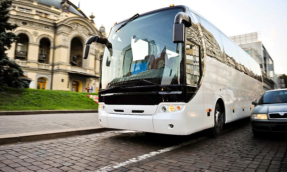 white-bus